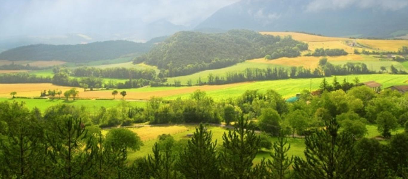 Lush fertile landscape