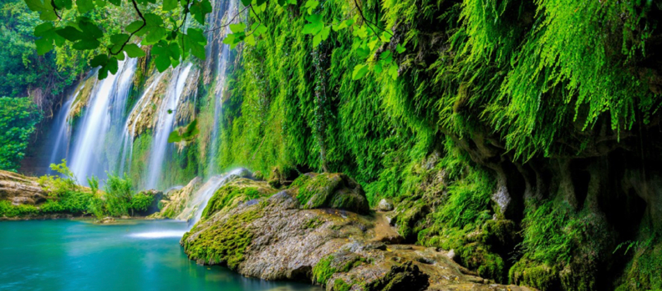 Verdant waterfall and cliffs