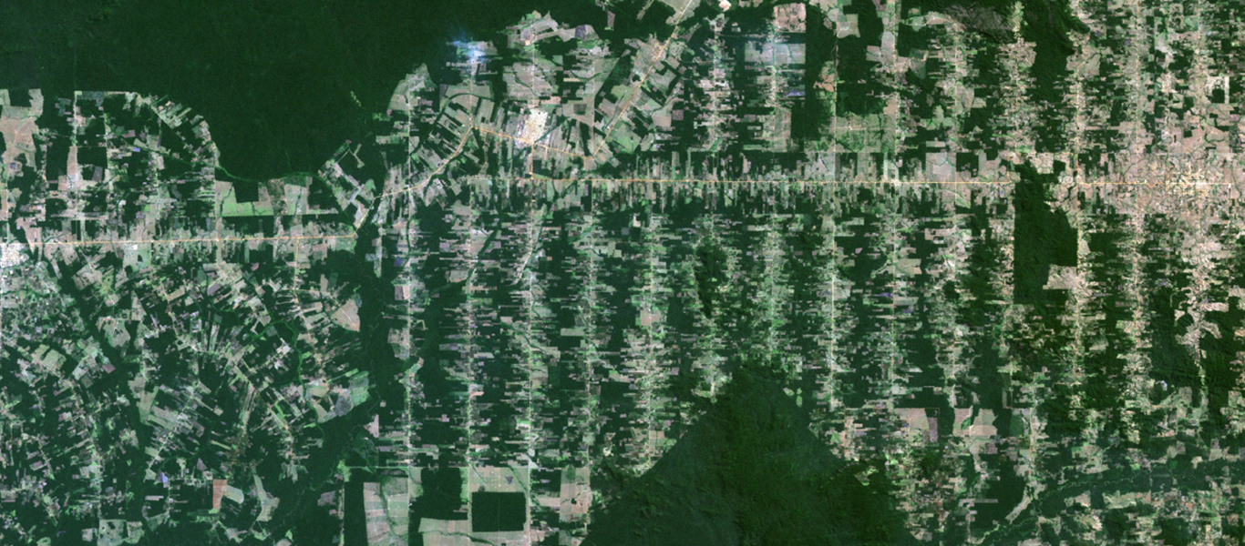 Satellite view of Amazon rainforest