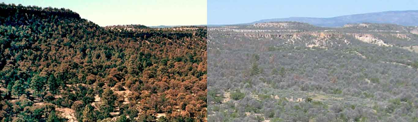 Climate induced drought in US Southwest
