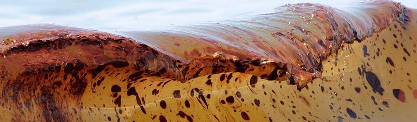 Ocean oil spill 5 years later