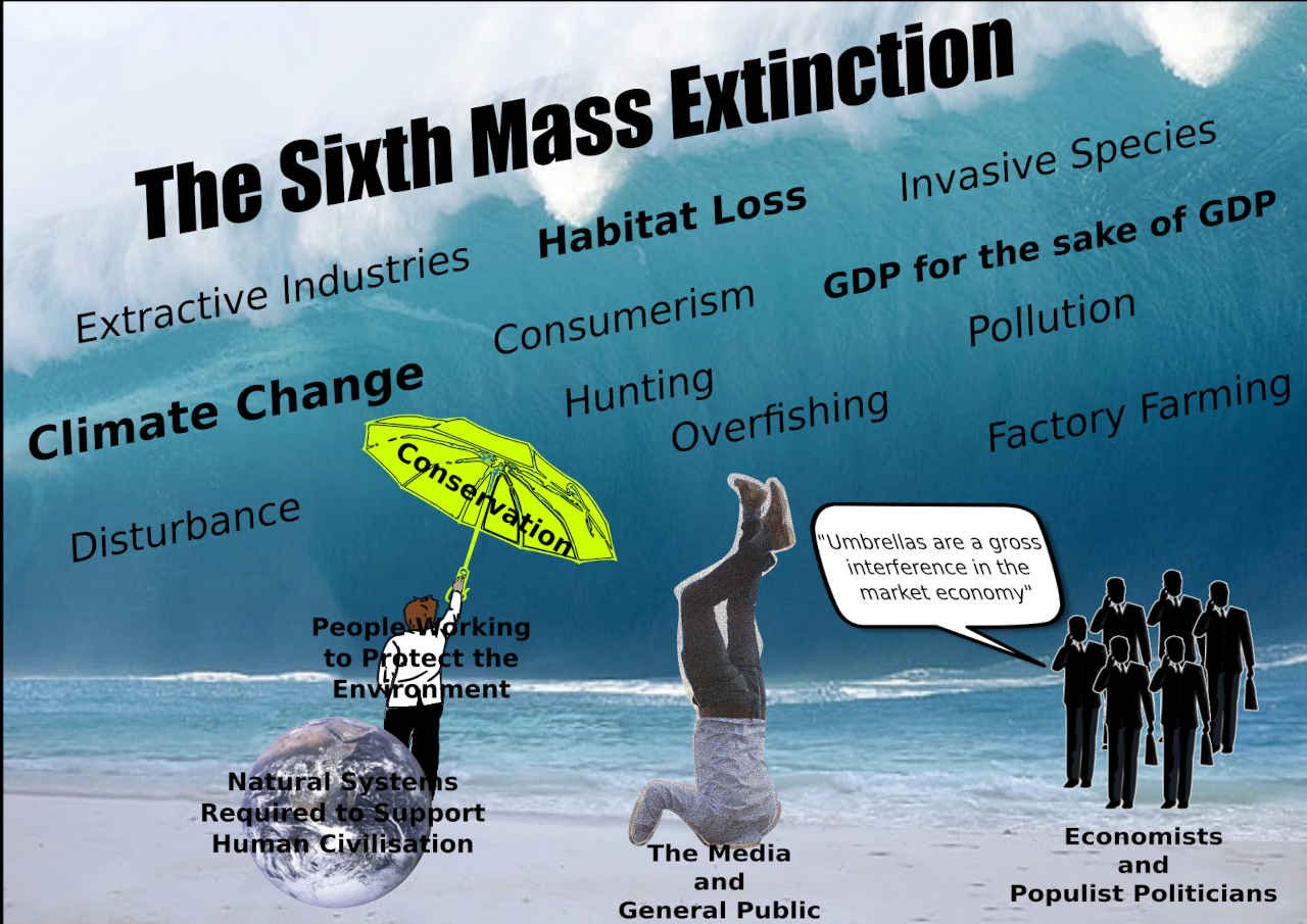 The Sixth Mass Extinction